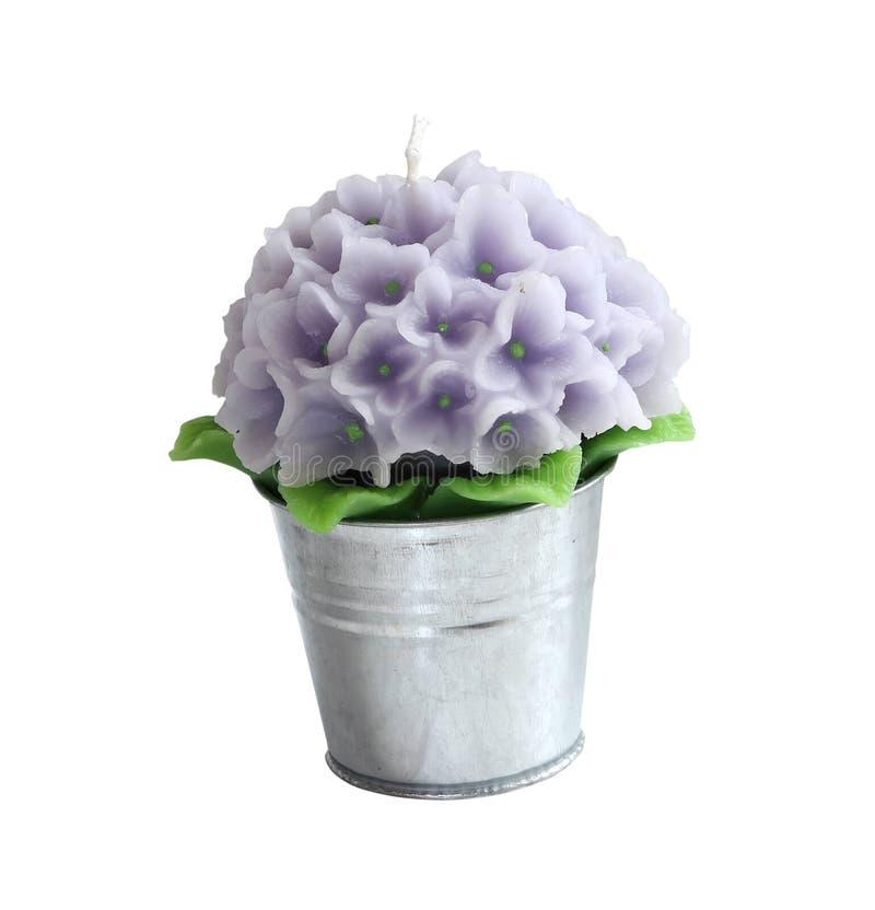 Download Flower candle stock image. Image of metal, bucket, flowerpot - 17751919