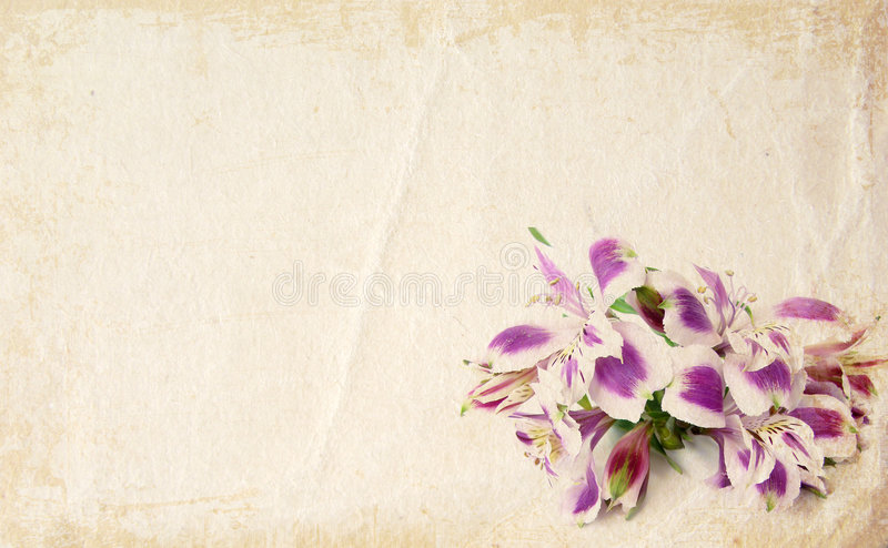 Flower Card Royalty Free Stock Photos