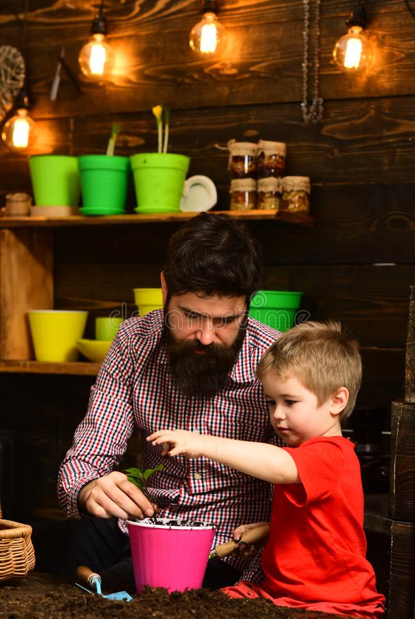 Flower care watering. Soil fertilizers. Family day. Greenhouse. happy gardeners with spring flowers. Father and son. Fathers day. bearded men and little boy stock photo