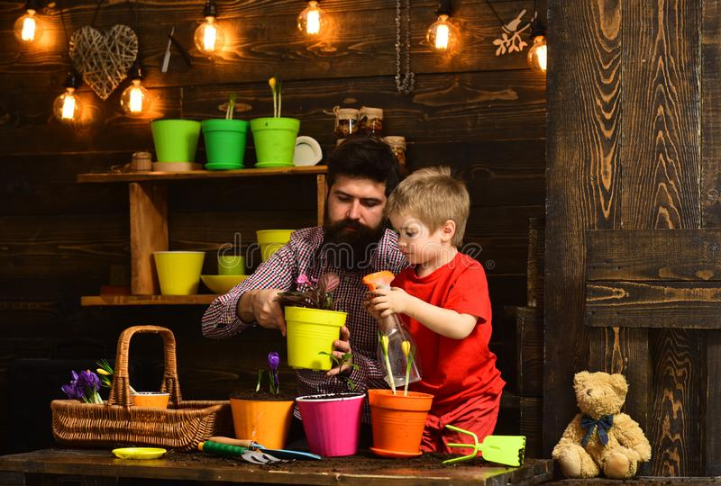 Flower care watering. Soil fertilizers. Father and son. Fathers day. Family day. Greenhouse. bearded man and little boy. Flower care watering. Soil fertilizers royalty free stock image