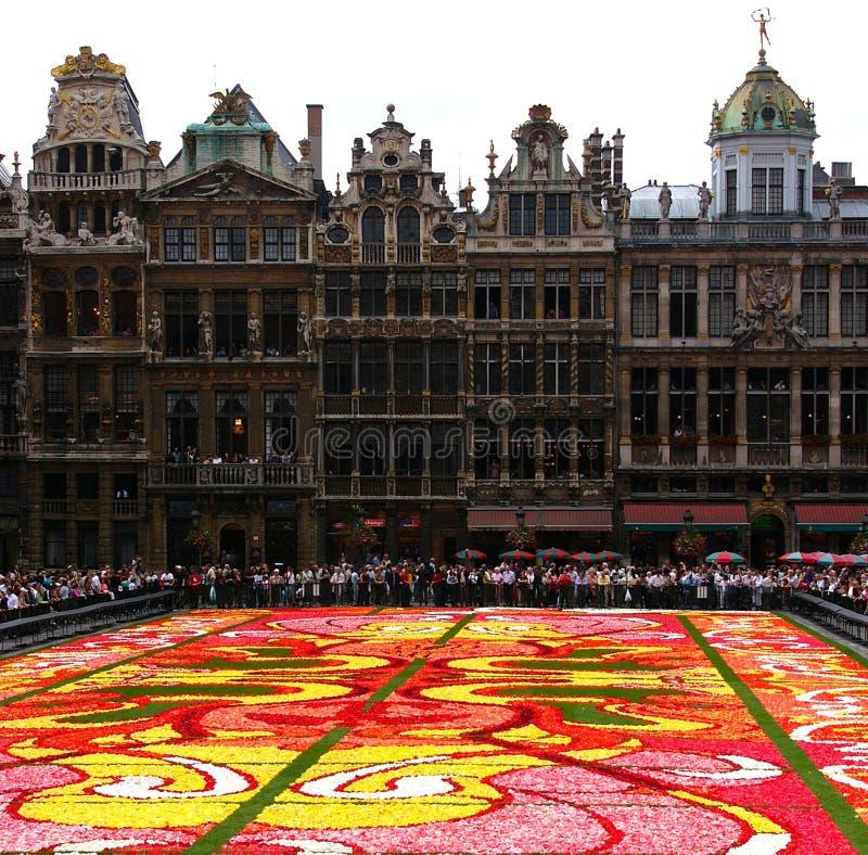 Download Flower carpet stock photo. Image of green, grotemarkt, grand - 101948