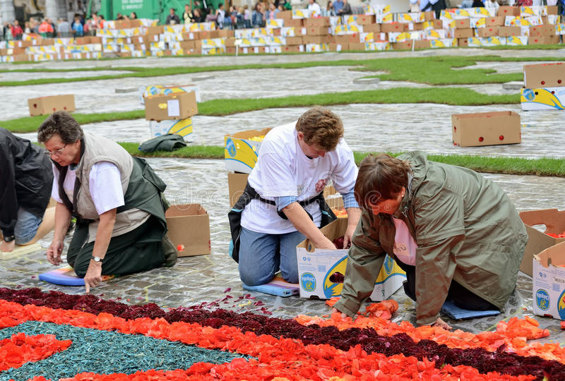 Flower Carpet on Grand Place during rain royalty free stock photography