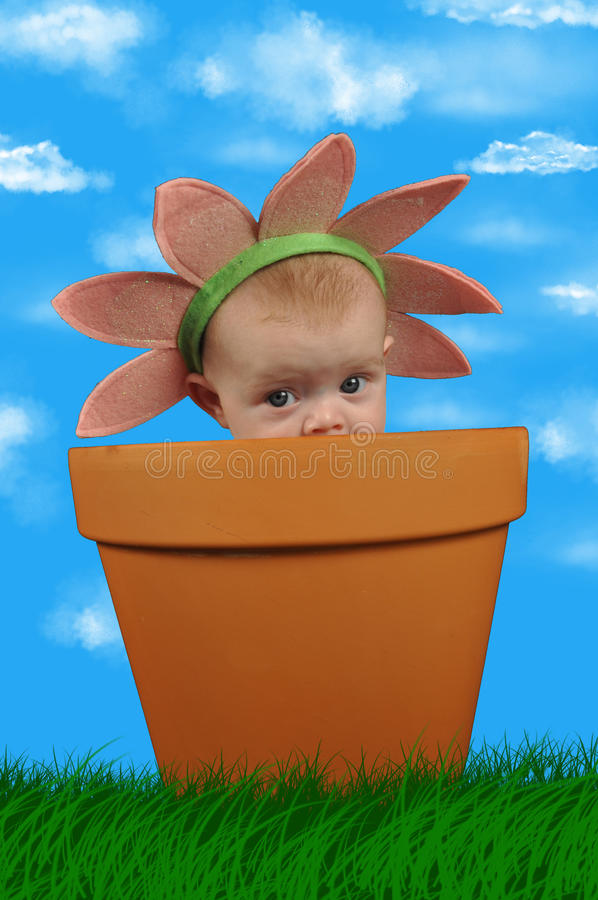 Flower child. My baby in a flower pot stock photos