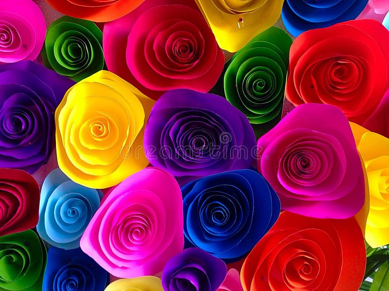Flower of color stock images