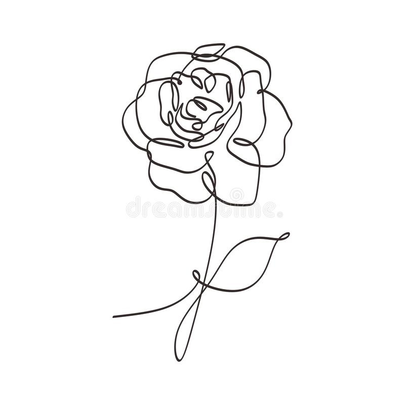 Flower continuous one line art drawing vector illustration. Beauty rose single sketch isolated on white background stock illustration