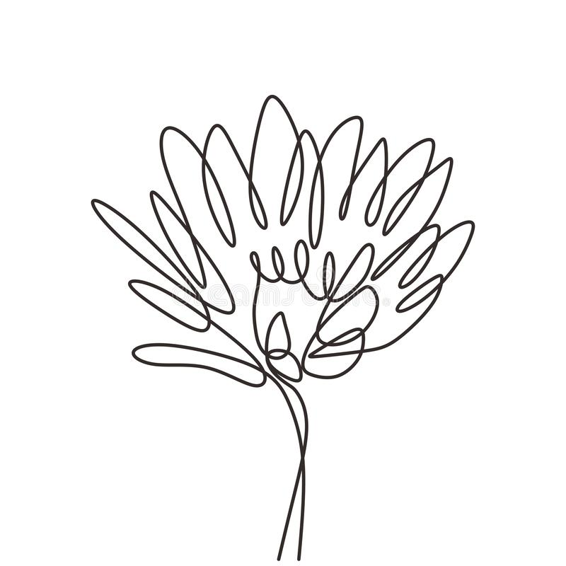 Flower continuous one line drawing vector minimalism lineart. Beauty symbol of art. Illustration, sketch, plant, outline, graphic, isolated, icon, nature royalty free stock photography