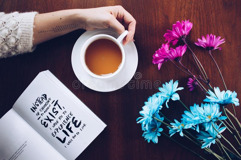 Flower, Cup, Coffee Cup stock photos
