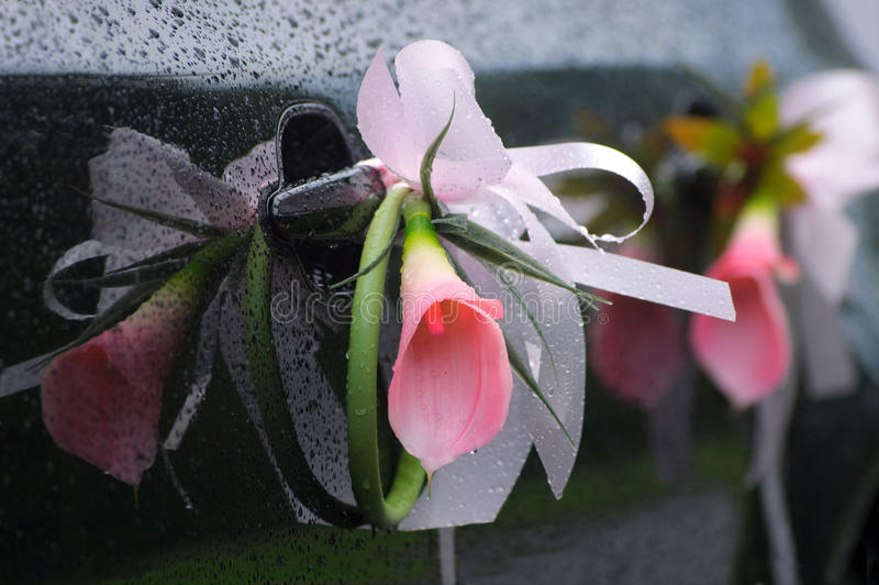 Download Flower decoration stock image. Image of rain, elegance - 26328405