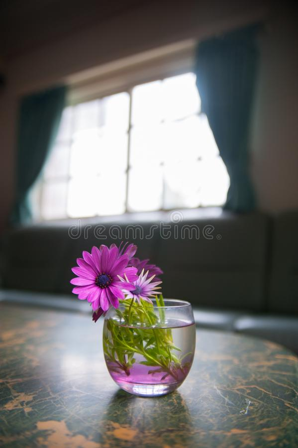 Flower on the desk is taken around Tokyo, Japan. It was pictured in the summer season. The world is sometime a bit too small stock photo