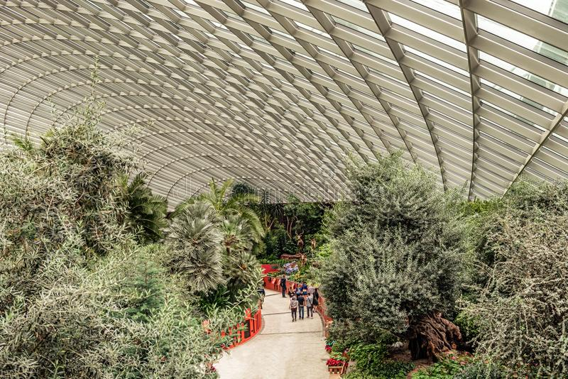 Flower Dome conservatory. Gardens by the Bay. Singapore,. Singapore Jan 11, 2018: Tourists visiting flower dome conservatory at Gardens by the Bay in Singapore stock photography