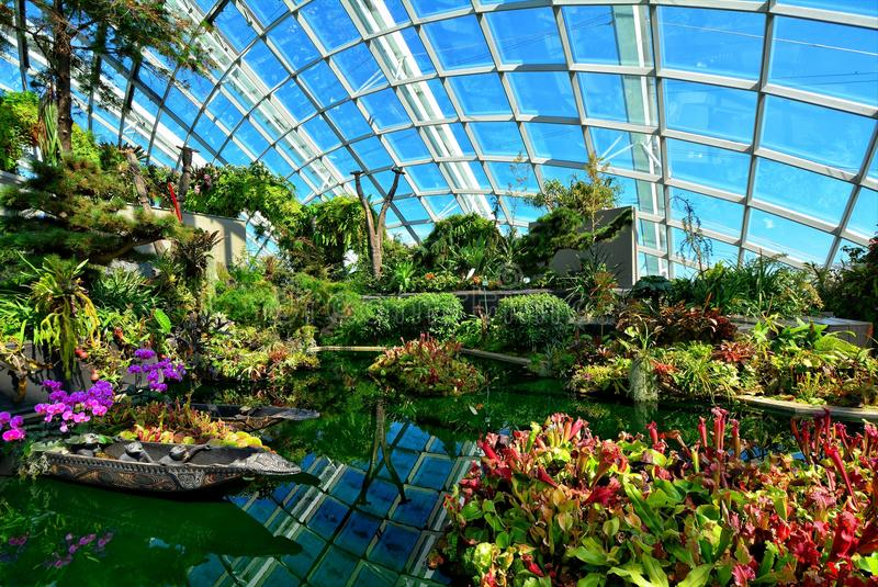 Flower Dome, Gardens by the Bay, Singapore. A photograph inside the Flower Dome in Gardens by the Bay in Singapore stock photo