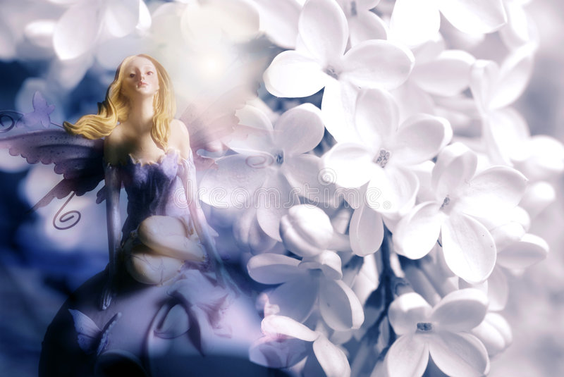 Download Flower fairy stock image. Image of white, fairies, wings - 9270995