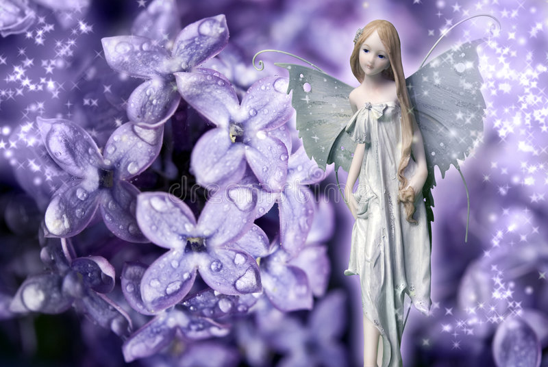 Download Flower fairy stock photo. Image of mystical, spirit, wings - 9336278