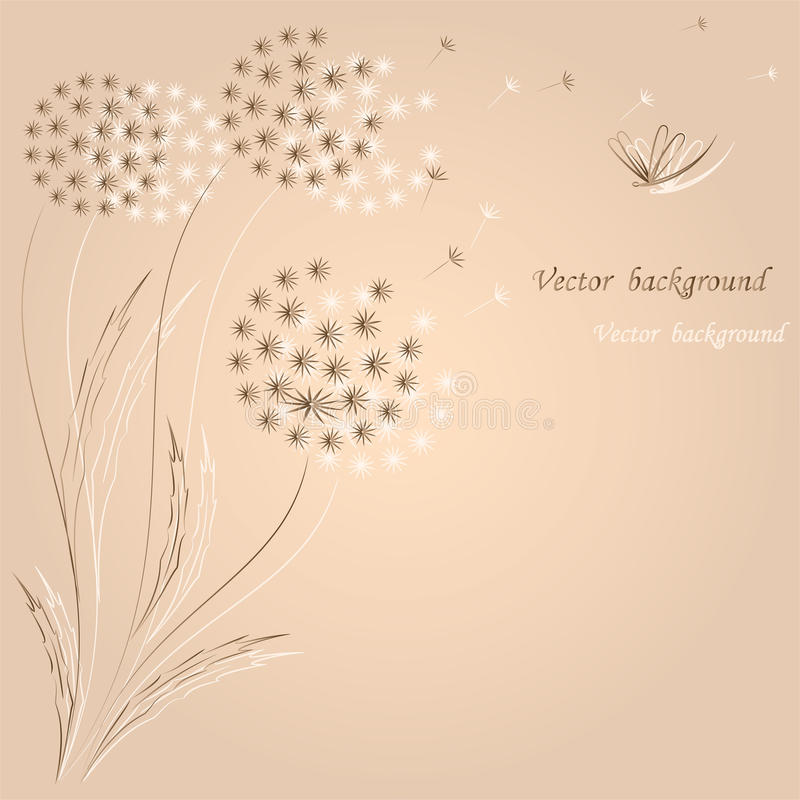 Flower a fashion a background with dandelions. royalty free illustration