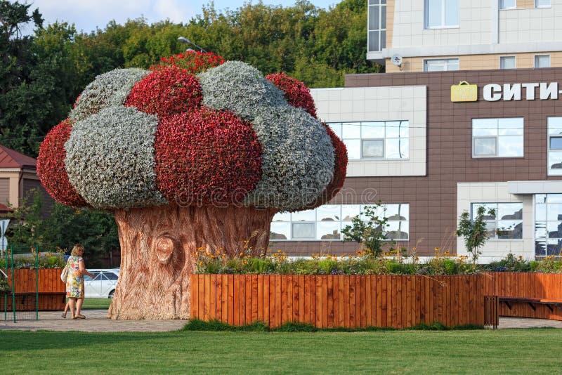 Flower Festival på torget framför Ekiyat Puppet Theater Staden Kazan, Republiken Tatarstan, Ryska federationen fotografering för bildbyråer