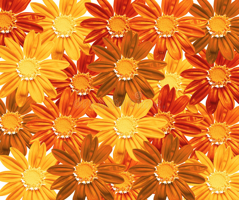 Flower field. Flower texture - llustration, floral background, red, yellow, brown colors stock illustration