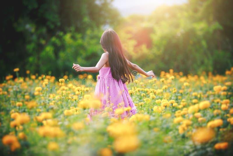 Flower fields. Little asian girl in flower fields, Outdoor portrait stock photography