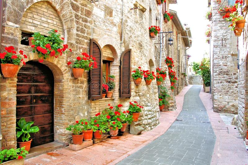 Flower filled Italian lane royalty free stock photography