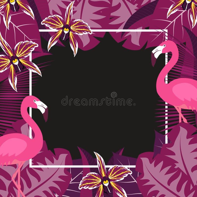 Free Flower Flamingo Frame 2 Stock Photography - 114524602