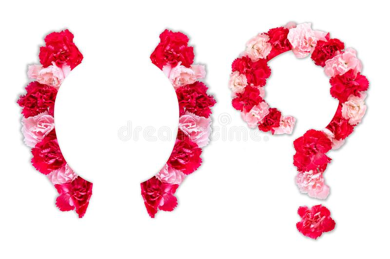 Flower font for symbol bracket, question mark collection alphabet A-Z set, made from real Carnation flowers pink, red color royalty free stock photos