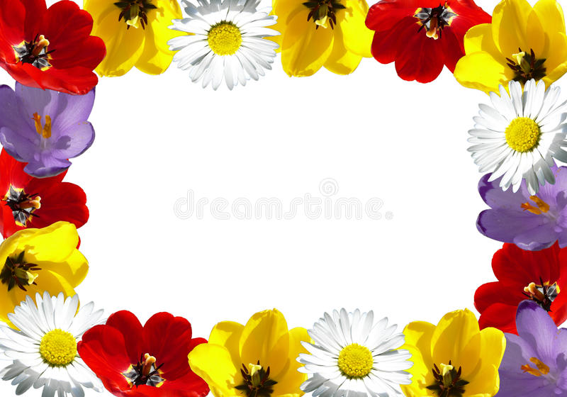 Flower frame. Made with various flowers royalty free stock image