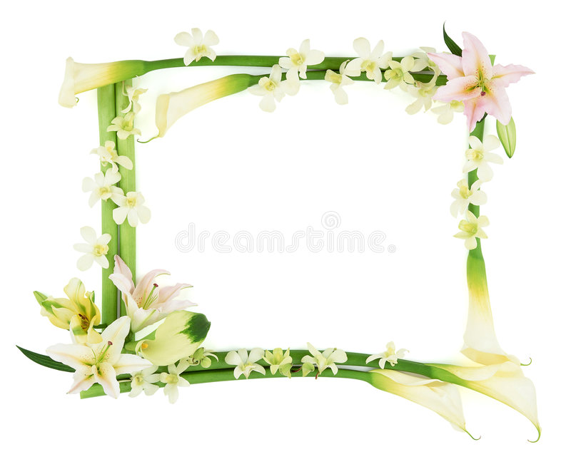 Download Flower Frame-3 Stock Photography - Image: 2734652