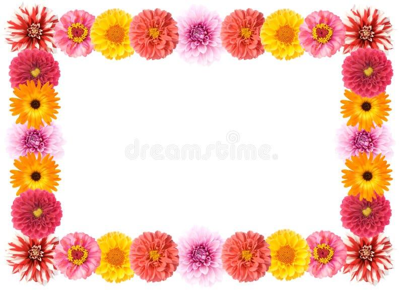 Flower frame. Different colors flower frame. High resolution stock photo