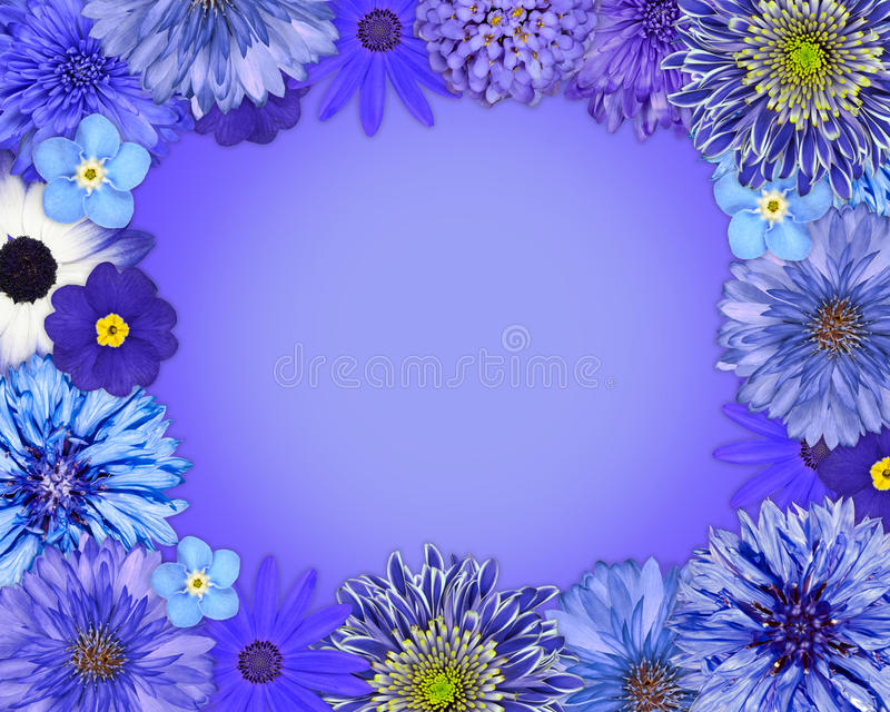 Flower Frame with Blue, Purple Flowers stock illustration