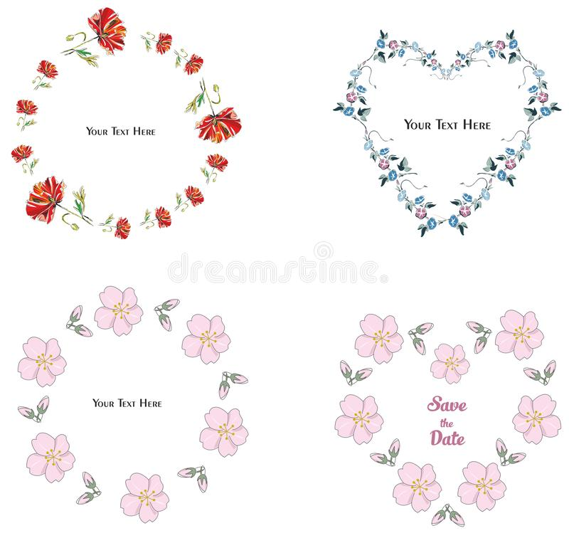 Flower frame collection on the white background stock photography