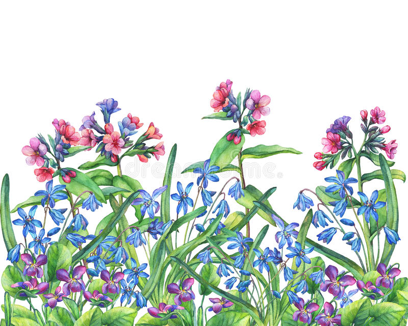 Flower frame of the Fragrant violets, lungwort and Scilla bifolia blue. royalty free illustration