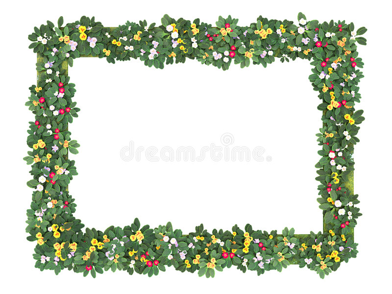Flower_Frame_Q ilustração royalty free