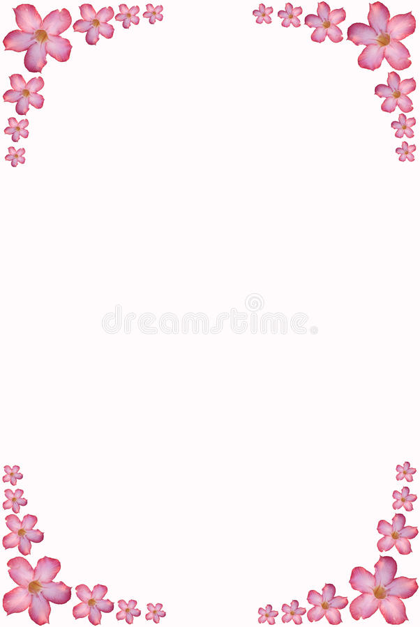 Flower frame with space for text stock photography