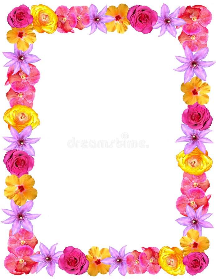 Flower Frame For Valentines & Mom\'s Day Stock Image - Image of frame ...