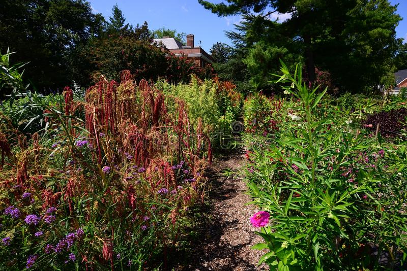 Flower Garden behind a home stock photography