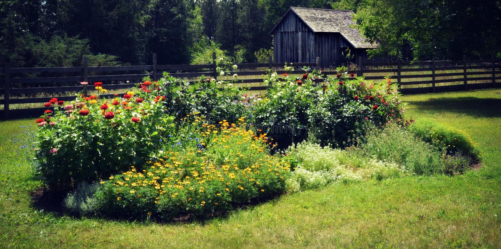 Flower Garden with Outbuilding. A flower garden with an outbuilding behind the fence at Old World Wisconsin in Eagle, WI royalty free stock photography