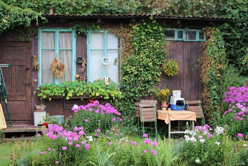 Flower, Garden, Plant, Yard royalty free stock photos