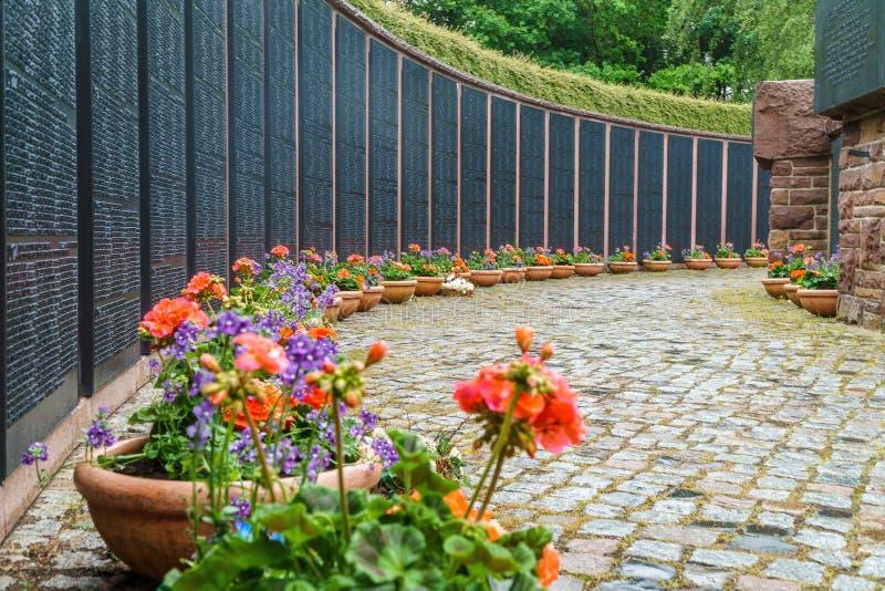 Flower, Garden, Plant, Yard stock photo