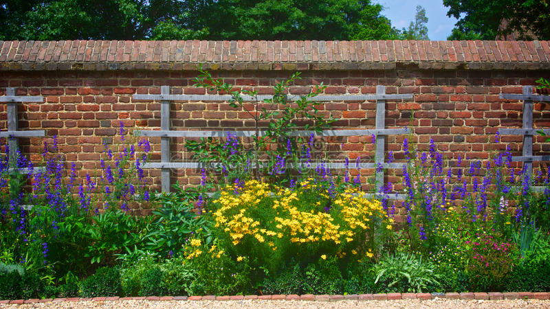 Download Flower Garden Wall With Trellis Stock Photo   Image Of Mansion,  George: 31673154