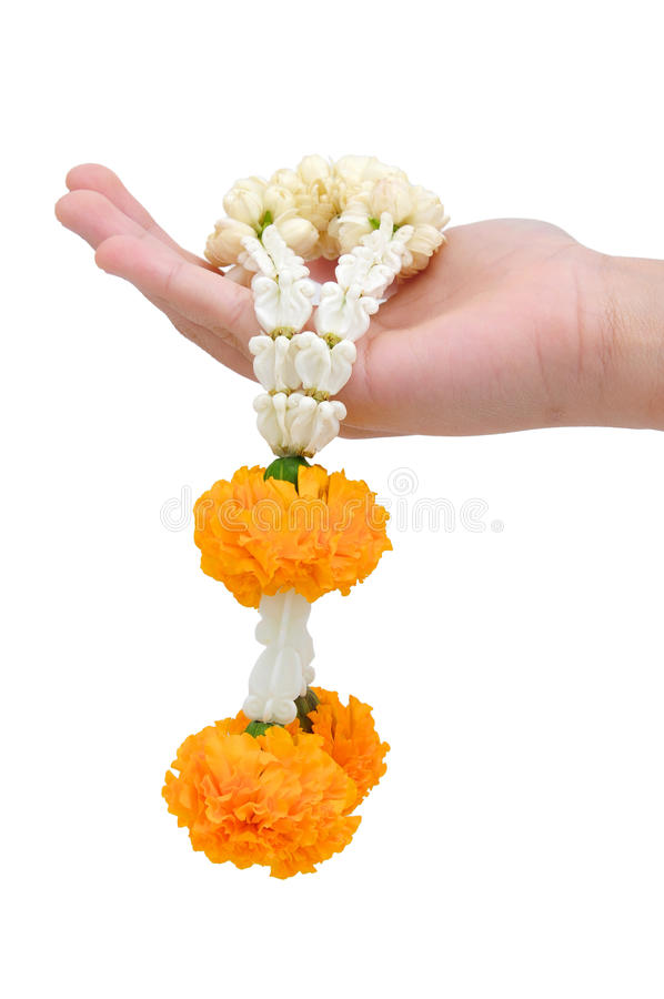 Download Flower Garland Royalty Free Stock Image - Image: 24045036