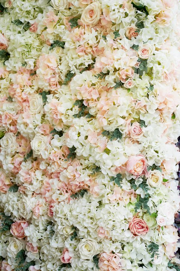 Flower garland on the wall. Dense wall of flowers. Wedding photo zone.Romantic space decor. Flower garland on the wall. Dense wall of flowers. Wedding photo zone stock images