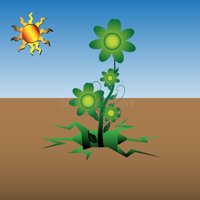 Download Flower Growing From Dry Soil Stock Vector - Image: 20445642