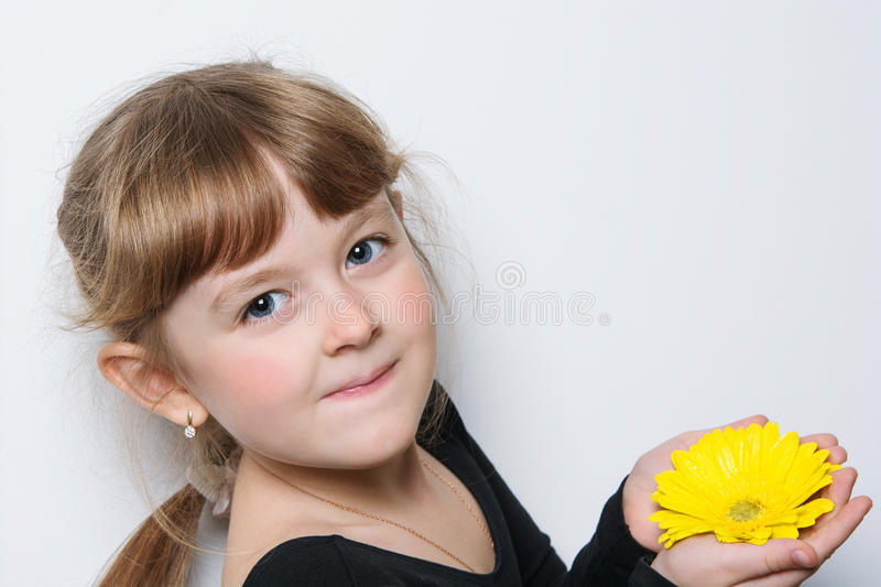 Flower in the hands of a young girl. Flower in the hands of a girl royalty free stock photography
