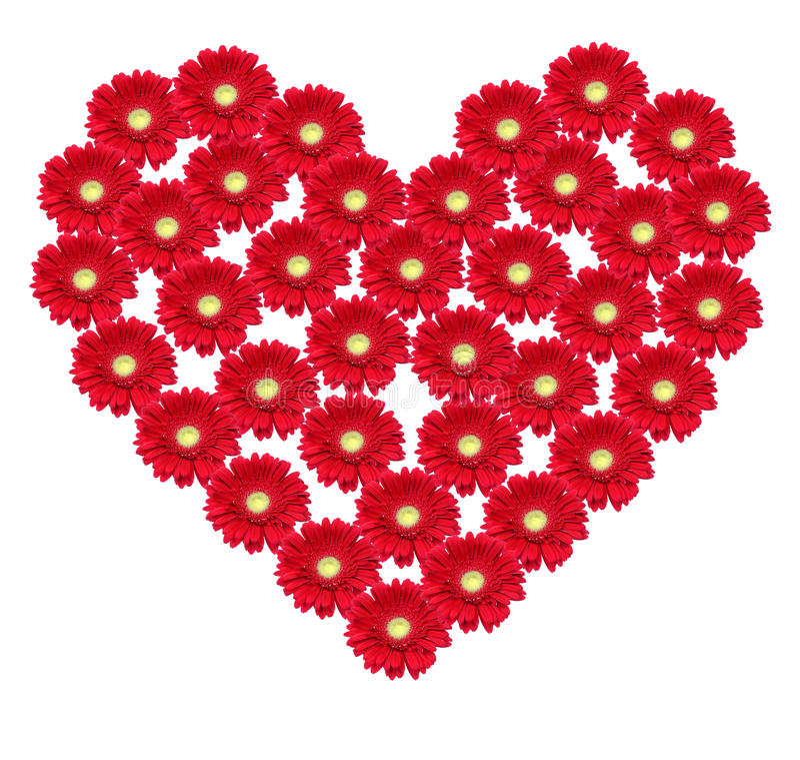 Flower heart royalty free stock image