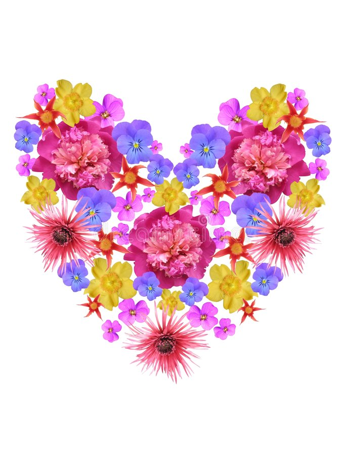 Free Flower Heart Royalty Free Stock Photography - 297667