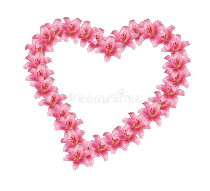 Flower heart stock image image of garden february holiday 8006997 flower heart mightylinksfo