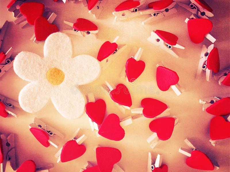 Flower and hearts royalty free stock images