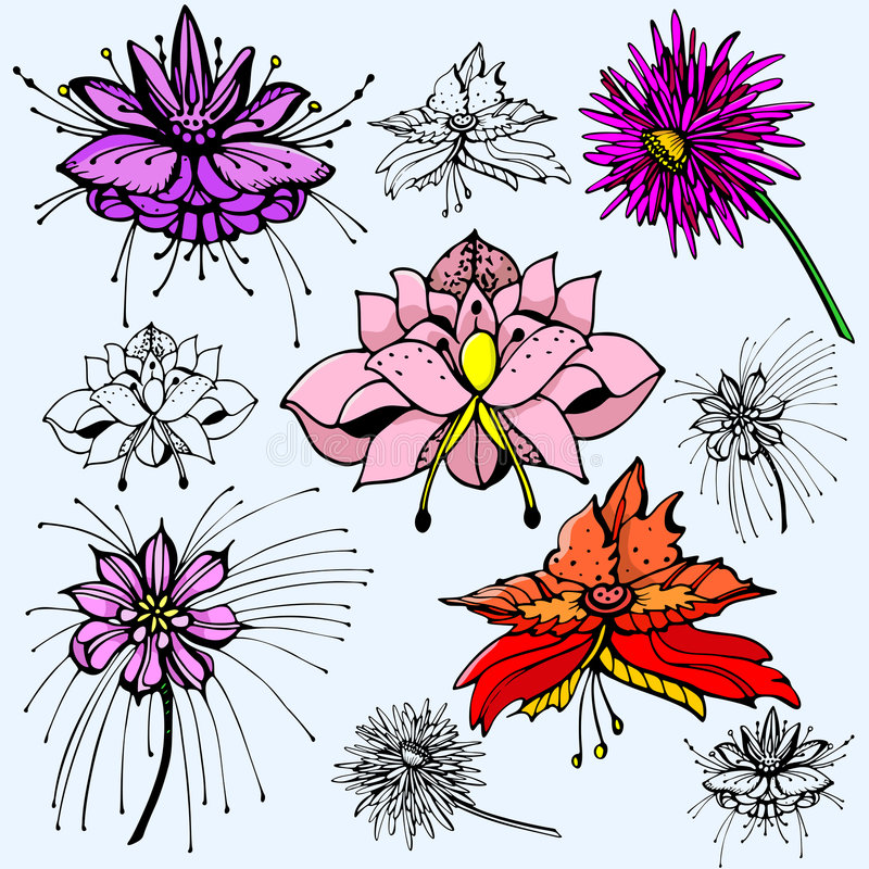 Free Flower Illustration Series Royalty Free Stock Images - 2746299