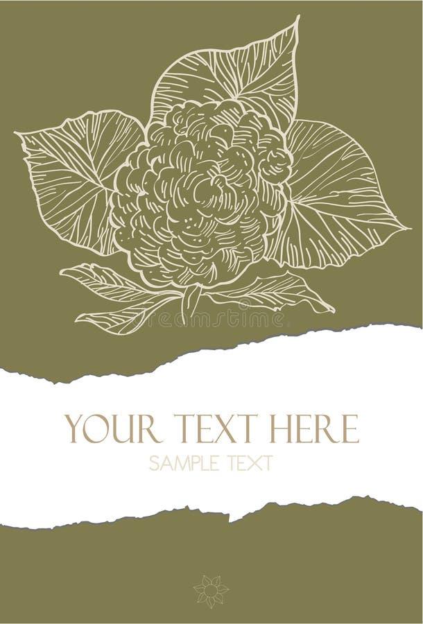 Download Flower Illustration On Torn Paper Stock Vector - Image: 25423076