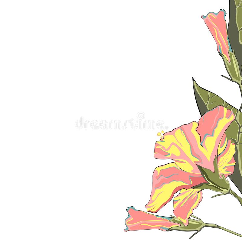 Tropical exotic yellow hibiscus flower branch, elegant card template. Small floral garland royalty free illustration