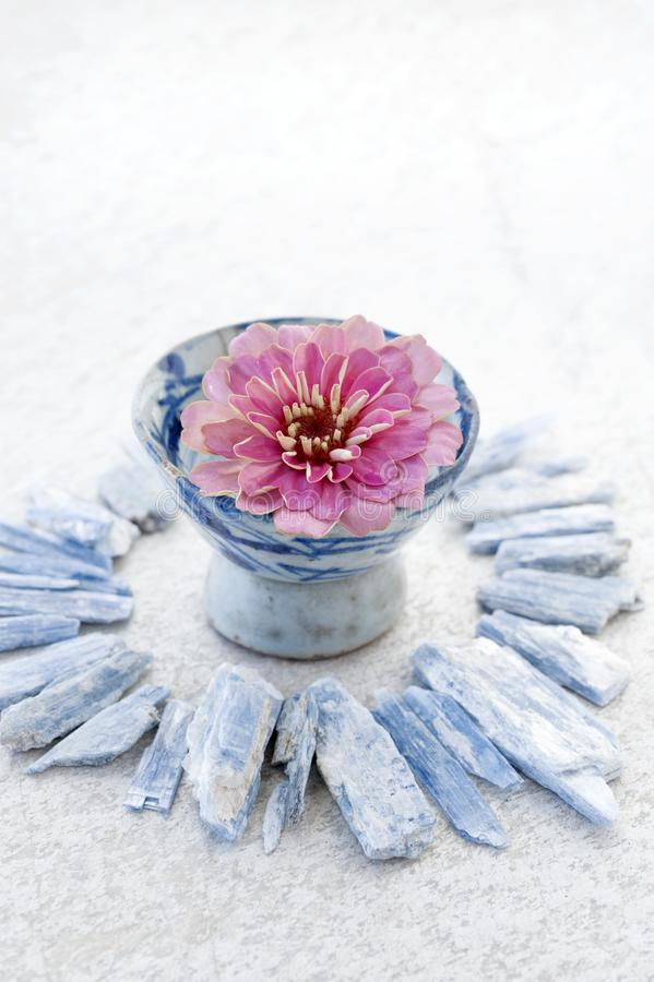 Flower in Japanese Tea Bowl With Kyanite Stone royalty free stock photography